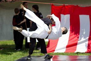 fest-11-judo-1